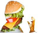 Basic Diet 1